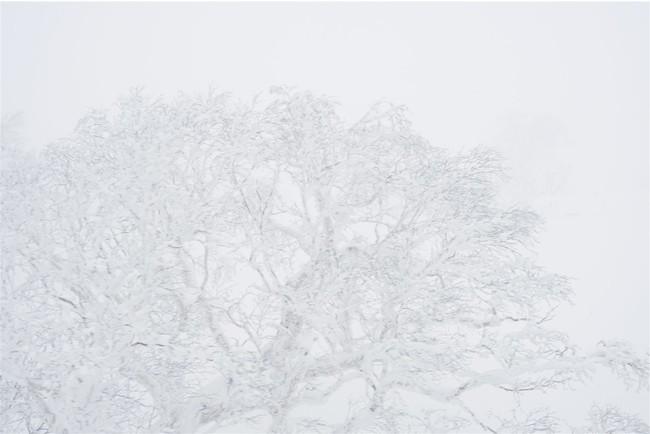 キロロの美しい自然