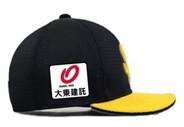 【大東建託】福岡ソフトバンクホークスとチームスポンサー契約継続決定