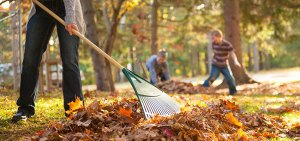 Top Five Ways to Boost Your Fitness This Fall