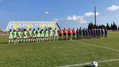 Photo of Dennerby rates Super Falcons preparation for 2019 Women's World Cup