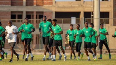 Photo of Intl Friendly: Super Eagles To Play Ukraine In September