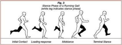 4 phases of running