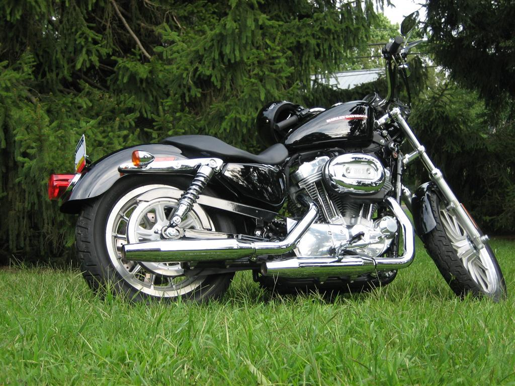 hight resolution of xl 883c sportster 883