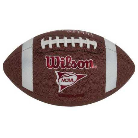 BALLON WILSON COMPOSITE ENTRAINEMENT OFFICIEL FOOTBALL AMERICAIN