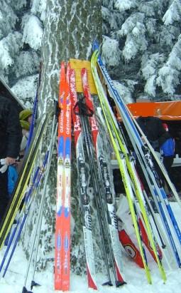 Ski [Alternativtext]
