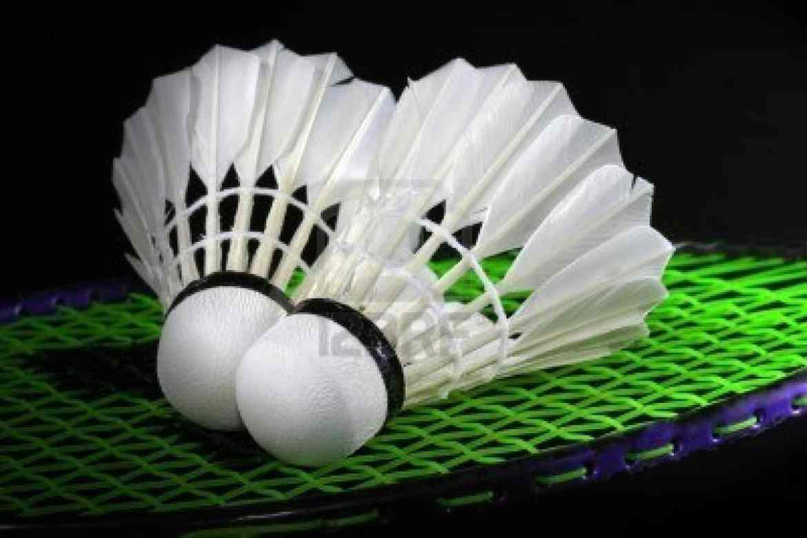 Are You Aware About These Facts About Badminton