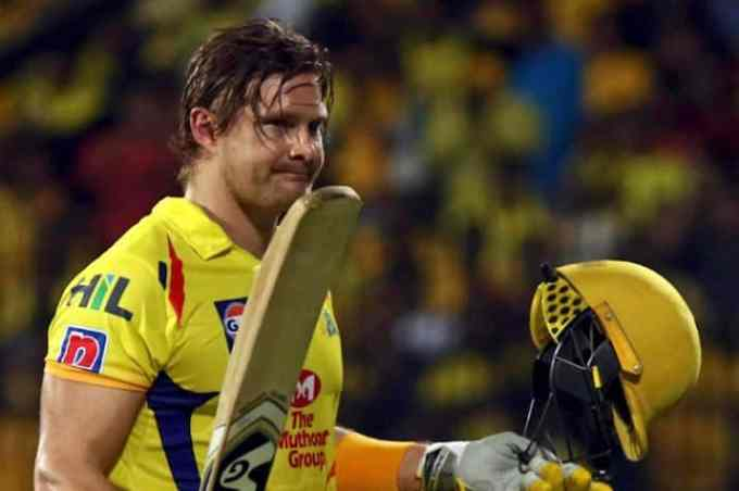 Photo of Shane Watson