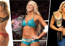 Top-20 WWE Hottest Female Wrestlers