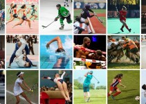 List Of Sports Governing Bodies In The US