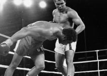 Top 15 Most Brutal Knockouts In Boxing History