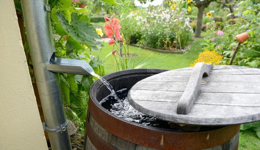 Colectarea apei de ploaie. Soluții pentru colectare, preaplin și distribuire