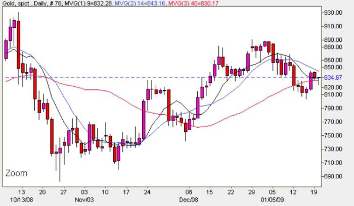 Spot Gold Prices Daily Chart - January 20th 2009
