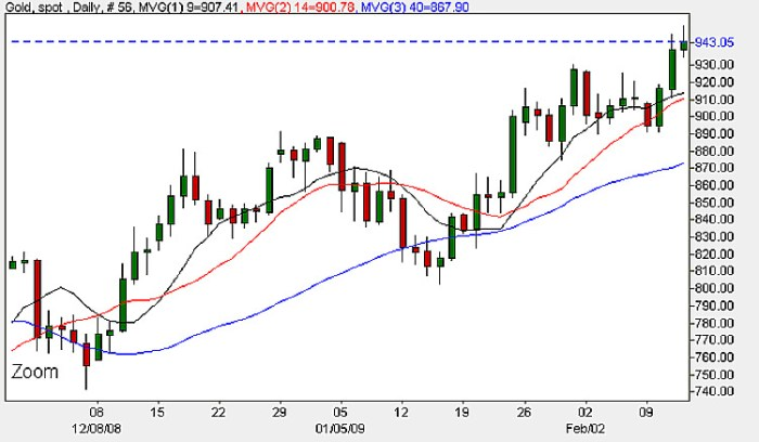 Spot Gold - Daily Candle Chart 13th February 2009