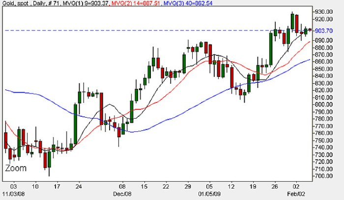Spot Gold Prices Today - Daily Candle Chart 5th February 2009