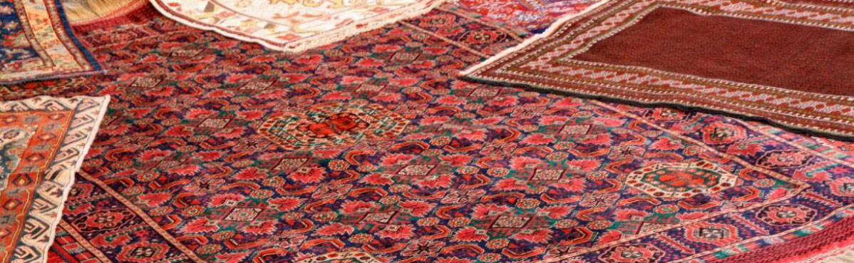 Spotless Cleaning Systems Area Rugs Cleaning