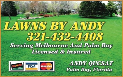 Lawns by Andy