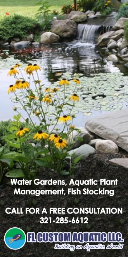 Building an Aquatic World