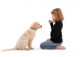 child-training-dog