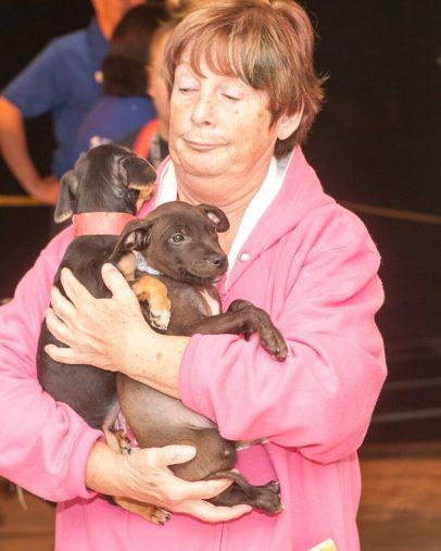 09-07-17 harvey dogs-9252
