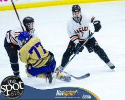 beth-cba hockey-5871