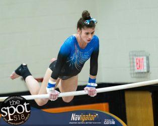 gymnastics-8155
