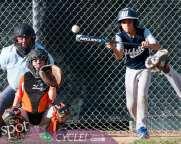 tuesday baseball-1458