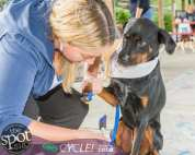 paws in the park-0836