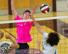 Col-shaker volleyball-5894