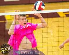Col-shaker volleyball-6130