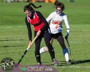 field hockey-9246