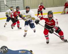 S-C AA hockey-4810