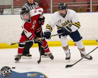 S-C AA hockey-8834