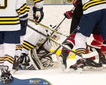 S-C AA hockey-9081