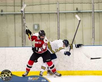 S-C AA hockey-9086