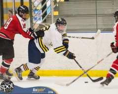 S-C AA hockey-9352