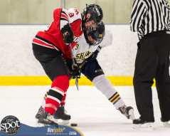 S-C AA hockey-9405