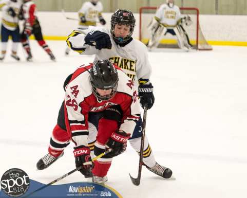 S-C AA hockey-9501