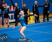 gym sectionals-9557