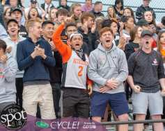 Bethlehem fans cheer on their team during the Section II, Class A championship against Shenendehowa at Mohonasen High School on Wednesday, May 22 2019 (Jim Franco/Special to the Times Union.)