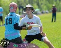 frisbees-8060