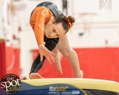 gymnastics-2113