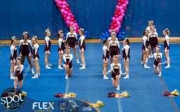 shaker cheer-5618