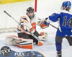 beth hockey-5946