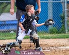 NC little league-4257