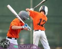 Beth-BC baseball-8984