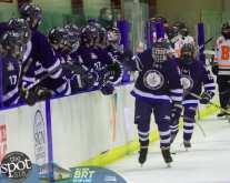 hockey and hoops web-3345