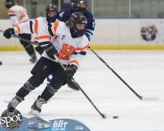 hockey and hoops web-3514