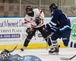 hockey and hoops web-3622