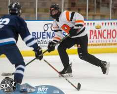 hockey and hoops web-3744