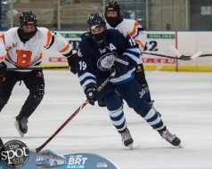 hockey and hoops web-3866